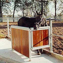 untersuchungsstand-pferde-zwingmnann