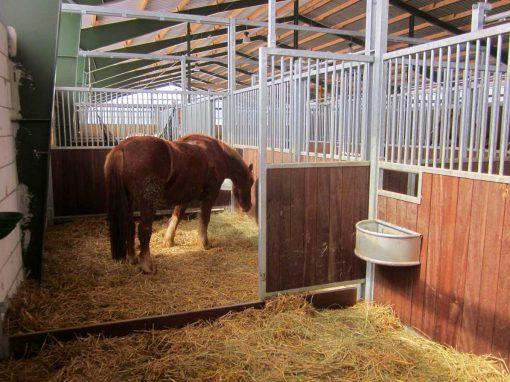 pferdeboxen-innenboxen-new-slide8